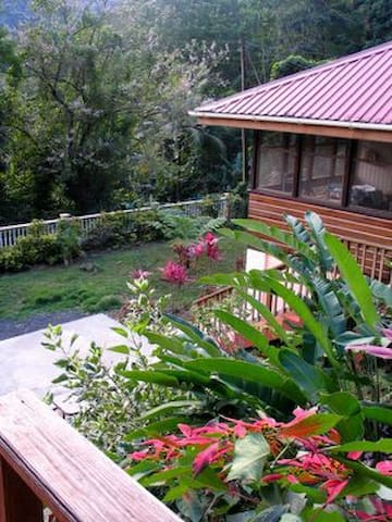 House in RainForest of Dominica - Roseau - House