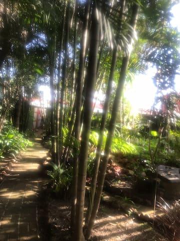 Oasis Verde Hermoso jardín con senderos.