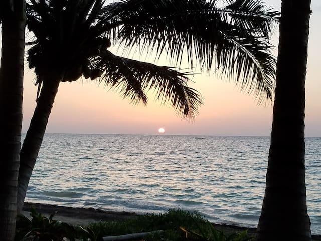 Remote beachfront, tropical beauty, eco friendly