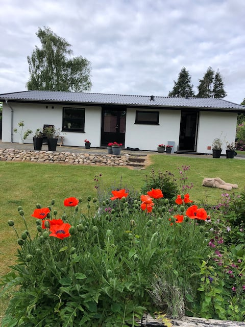 Lovely beautiful house with flower garden