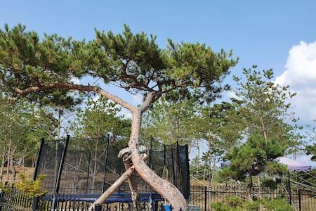재방문율 높은 ''달빛정원''에서 감성캠핑과 놀이를 모두 즐겨보세요.♡