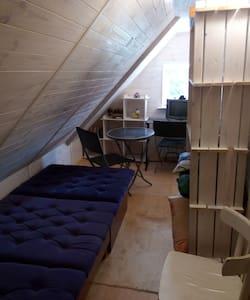 Отдельная одноместная комната в хостеле - Kyiv