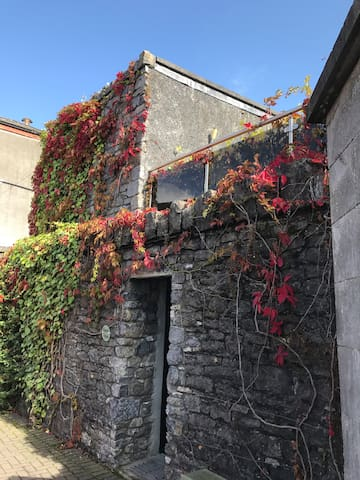 Pearse Mews