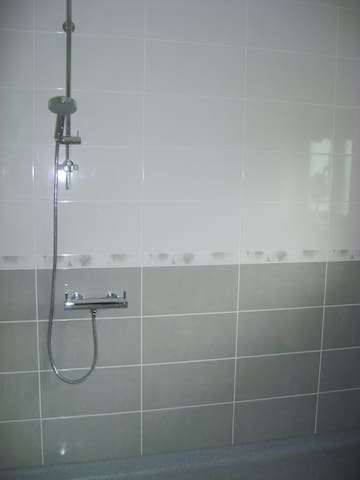 Newly refurbished downstairs wet room