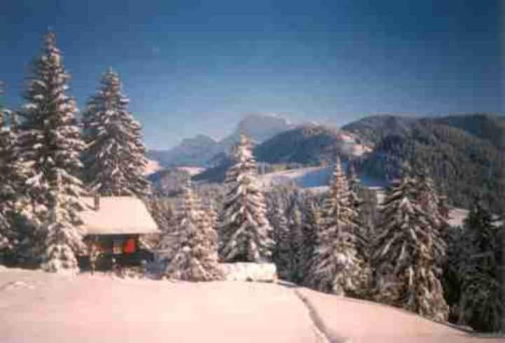 Holidays  in Gruyere/Lake Geneva