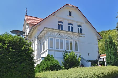 Bright ground floor apartment in Blankenburg in the Harz Mountains with wood stove and library