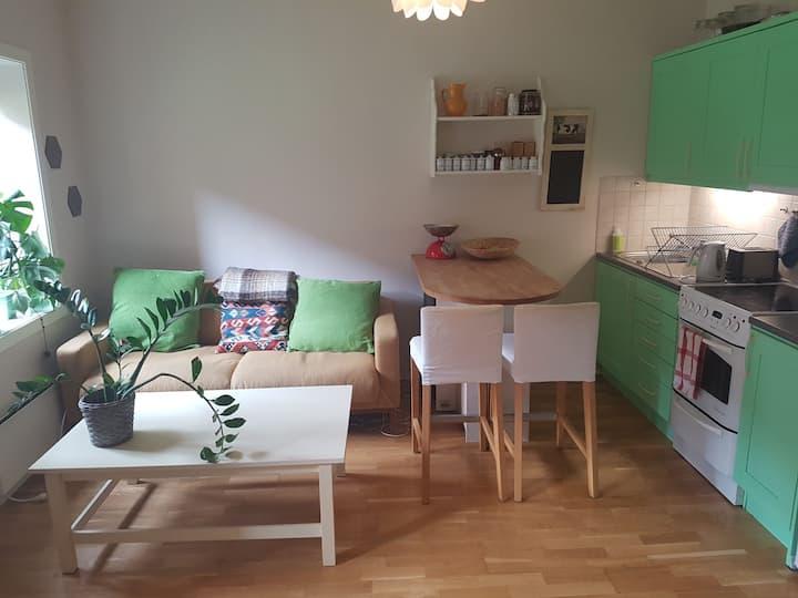 Cozy apartment in central, but quiet area