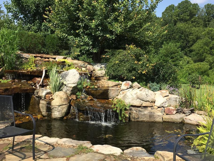 Relax by the waterfall and pond
