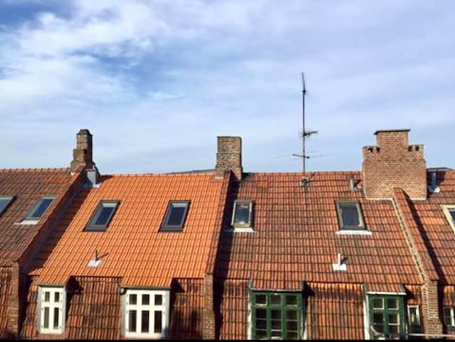 Charming roof top near City - København - House
