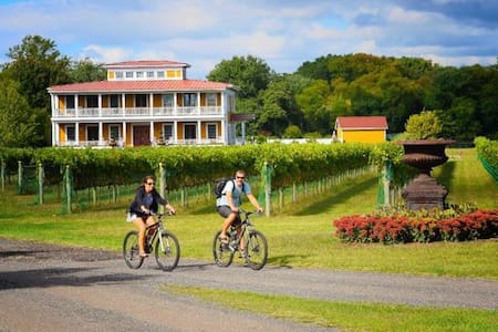 Vineyard peace and delight - West Cape May - Leilighet