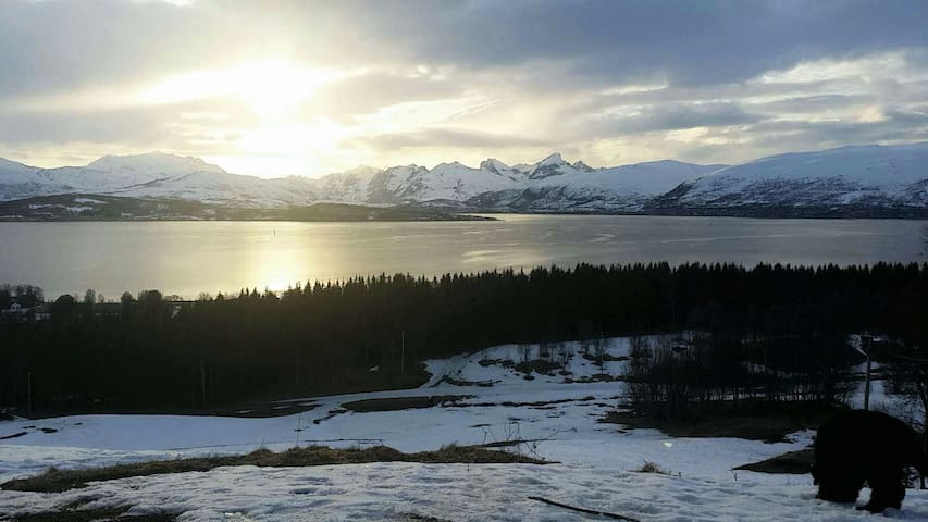 New listing! Beautiful view on top of the island - Tromsø - Lägenhet