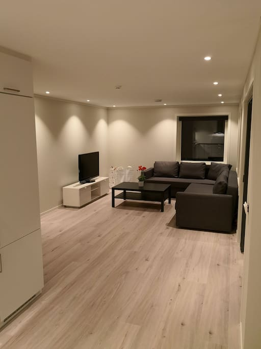 Roomy living room, with a high standard and modern surfaces.