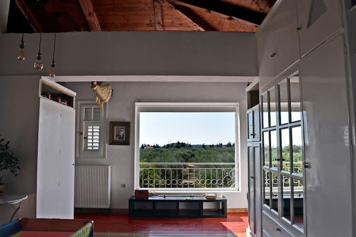 AUTENTICO zante (art apartments)