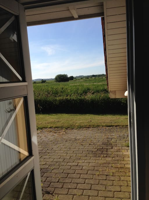 View over the fields from the front door