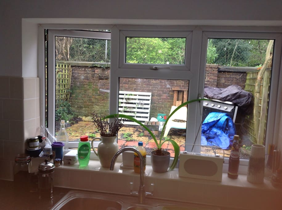 Kitchen in day - garden is clearer than that now!