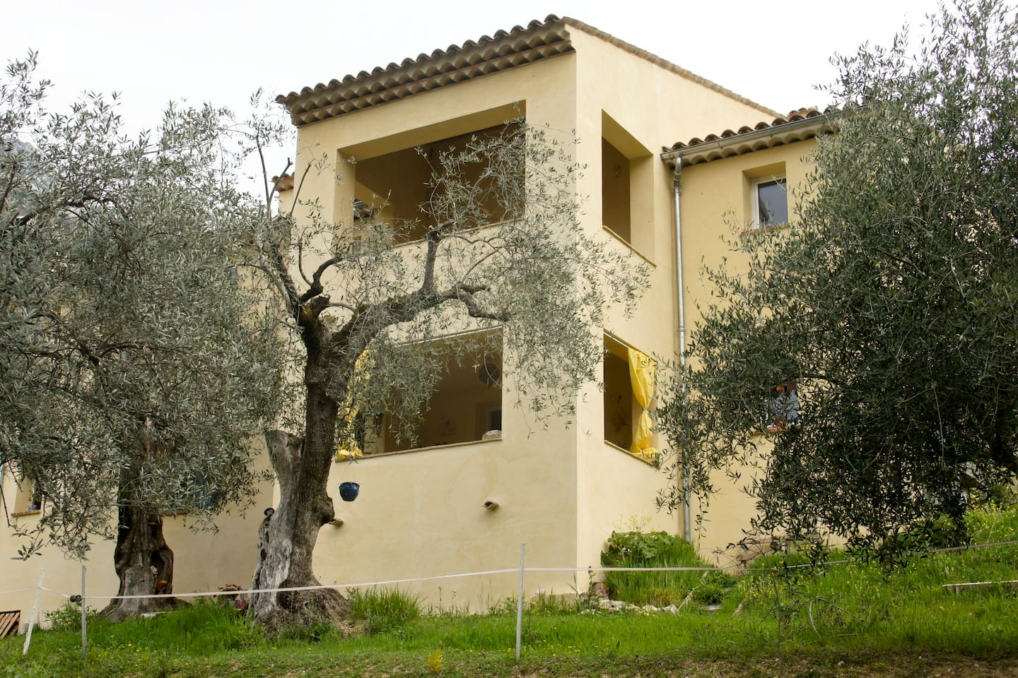 Le studio au rez-de-chaussée dans son écrin d'oliviers. The studio on the ground floor in the olive grove.