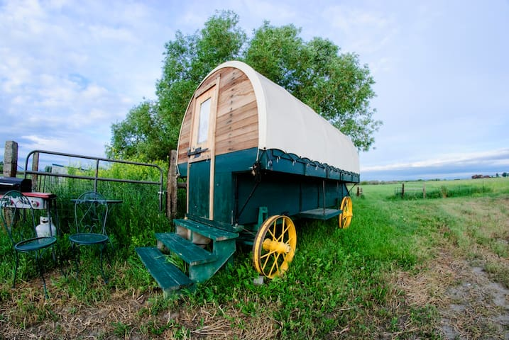 Aunthentic Montana Sheepherder's Wagon
