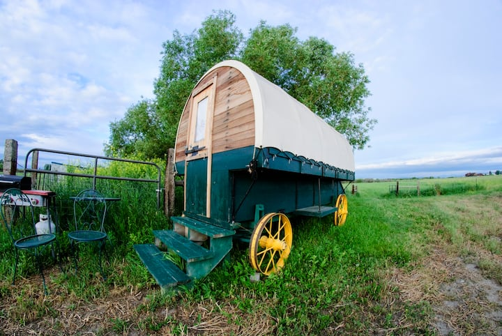Aunthentic Montana Sheepherder's Wagon