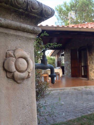 Accogliente casa indipendente - San Giovanni A Piro - Hus