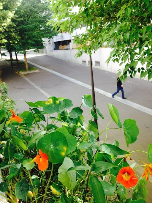 de la fenêtre, l'entrée du parc de Belleville