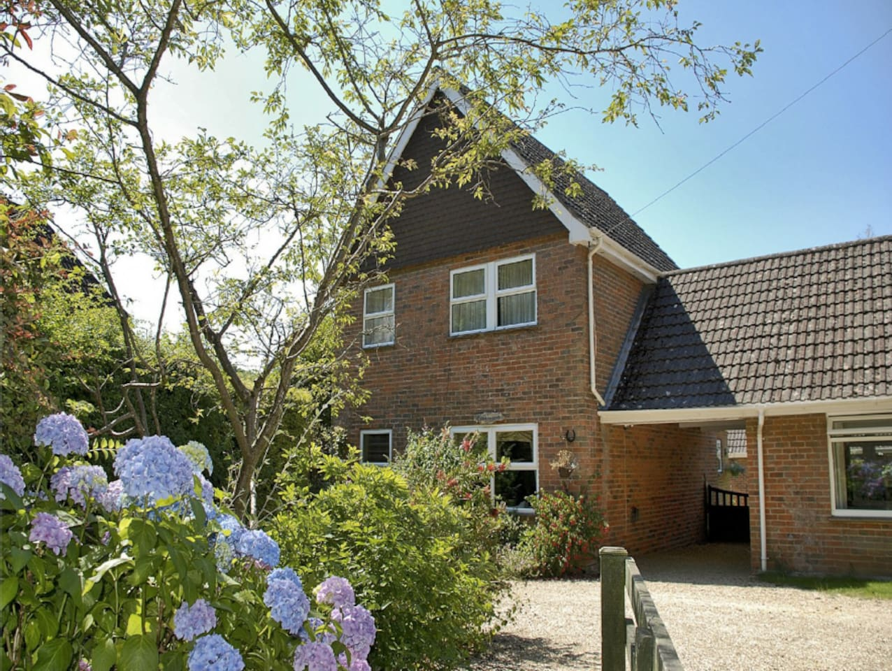 Burley Village in the New Forest is a perfect base for families and dog owners