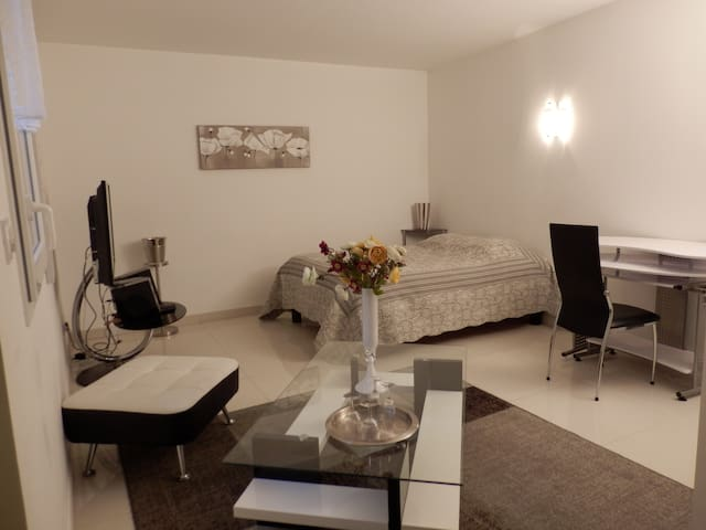 Gîte Le Sommeil du Meunier - Troyes - Apartmen