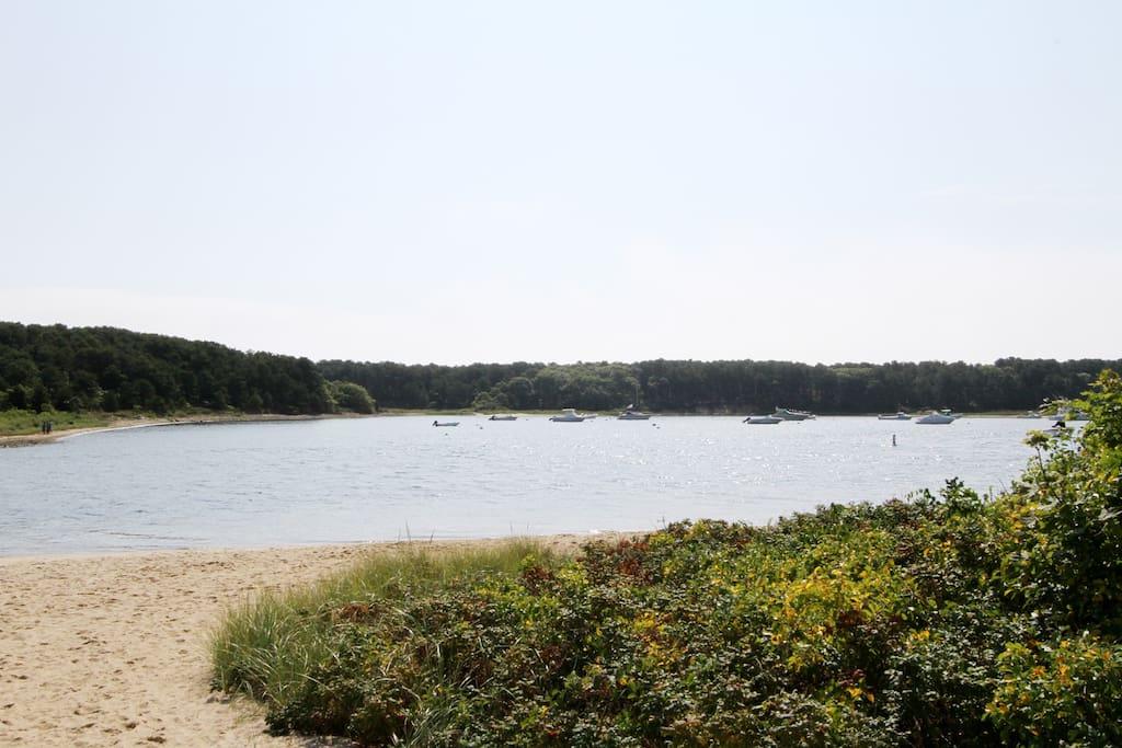 Enjoy the beaches and waterways surrounding Seacoast Shores.