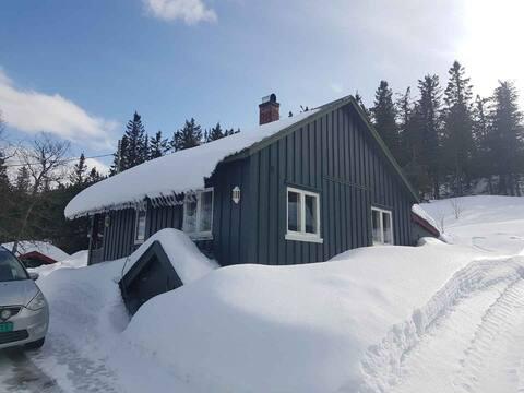 Hvit jul/ nyår? Noe ledig. Ski og alpin vis a' vis