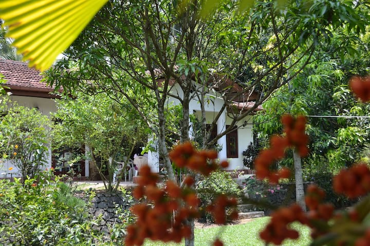 Diyagal Villa Pinnawala -Room 1 A/C - Rambukkana - House
