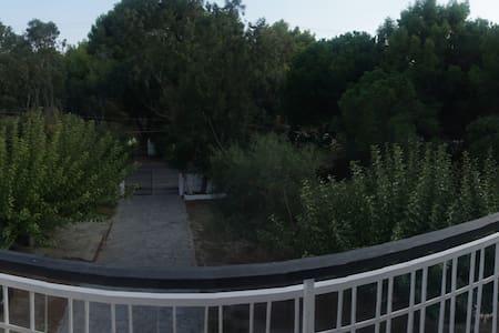 schinias beach house - Anatoliki Attiki