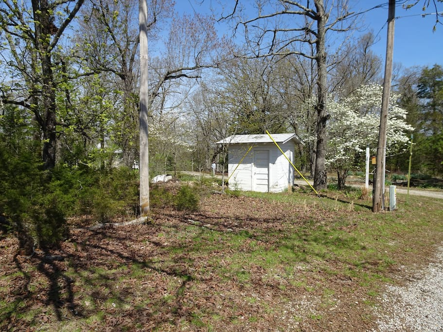 Wellhouse with dogwoods in bloom