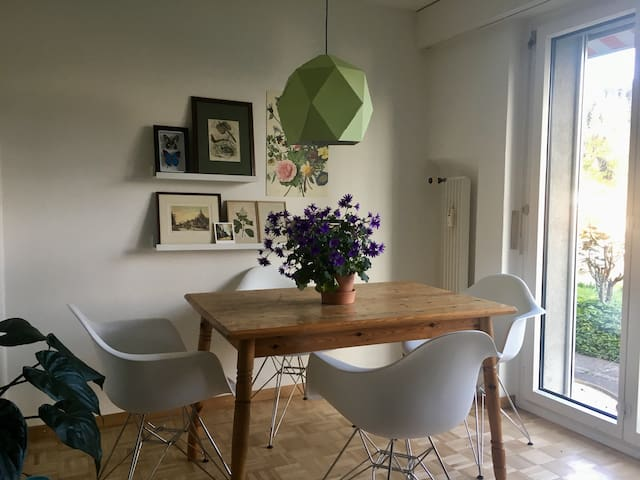 Beautiful room in lovely apartment with garden - Luzern - Daire