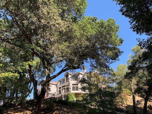 Villa: Vibrant arts,science & meditation community
