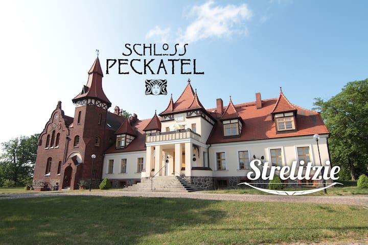 Ferien im Schloss Peckatel am Müritz-Nationalpark - Klein Vielen - Apartment