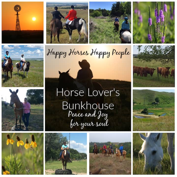 Horse Lover's Guest Bunkhouse (Fun and relaxation)