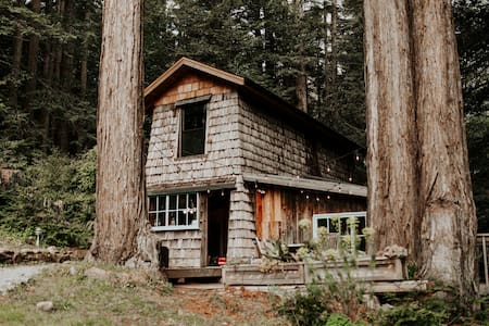 Rustic Yet Luxurious Cabin in the Redwoods