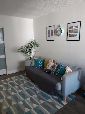 Cozy apartment near downtown