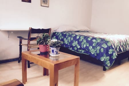 Nice private room in Coyoacan, near UNAM - Mexiko-Stadt