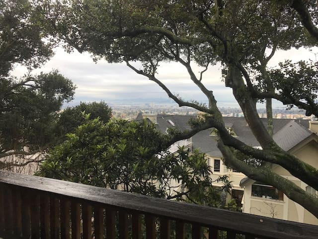 Room with a view in classic Arts & Craft home - Berkeley - Apartamento