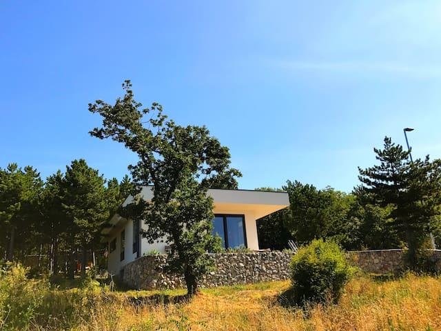 Villa Lilliputh Modern house in a pine forest