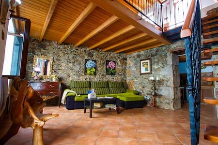 Casa Soraya - Firgas - Villa