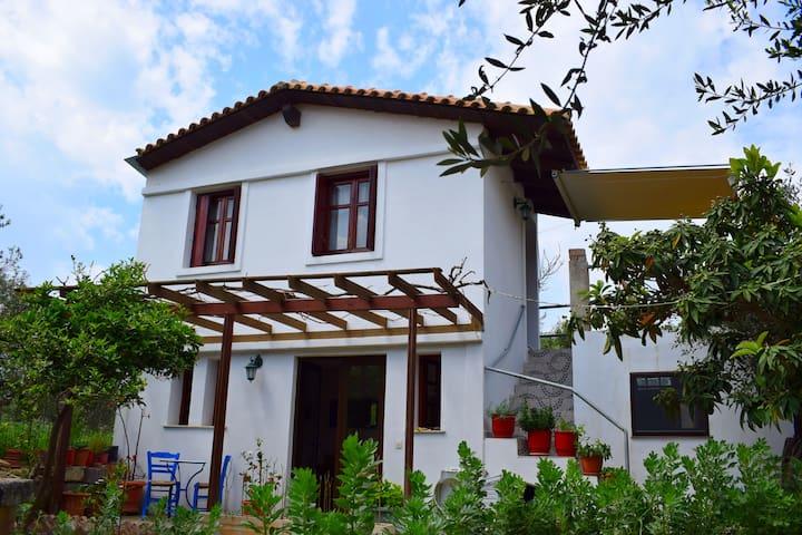 CASA DEL CALERGI - Agios Georgios - Rumah