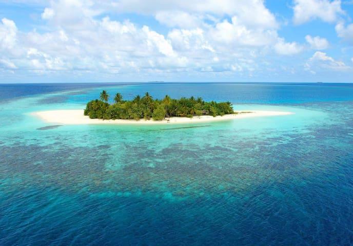 Paguro Beach Inn at Ukulhas, North Ari Atoll