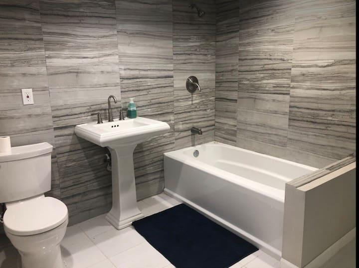 Open modern bright basement apartment