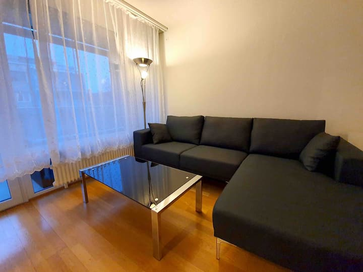 Entire Cozy Apartment Bern City