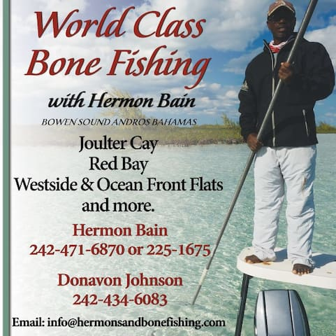 Hermons' Bonefishing Lodge - Andros Town - วิลล่า