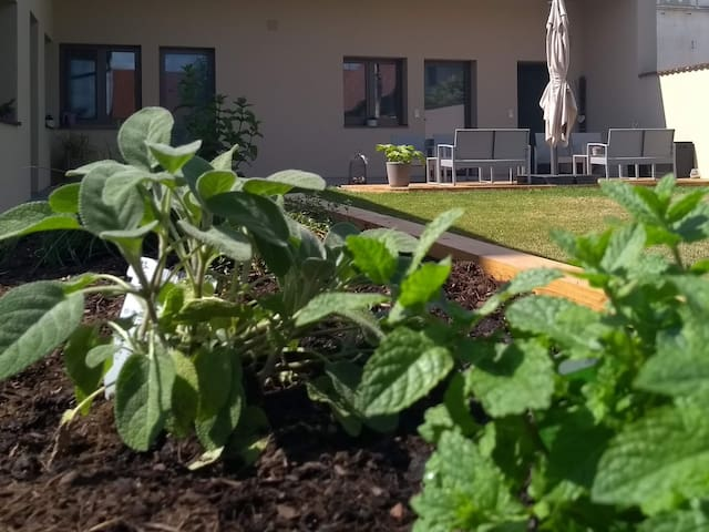 Garten; Kräuterhochebeet