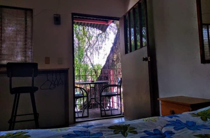 La casita del árbol en Coyoacán