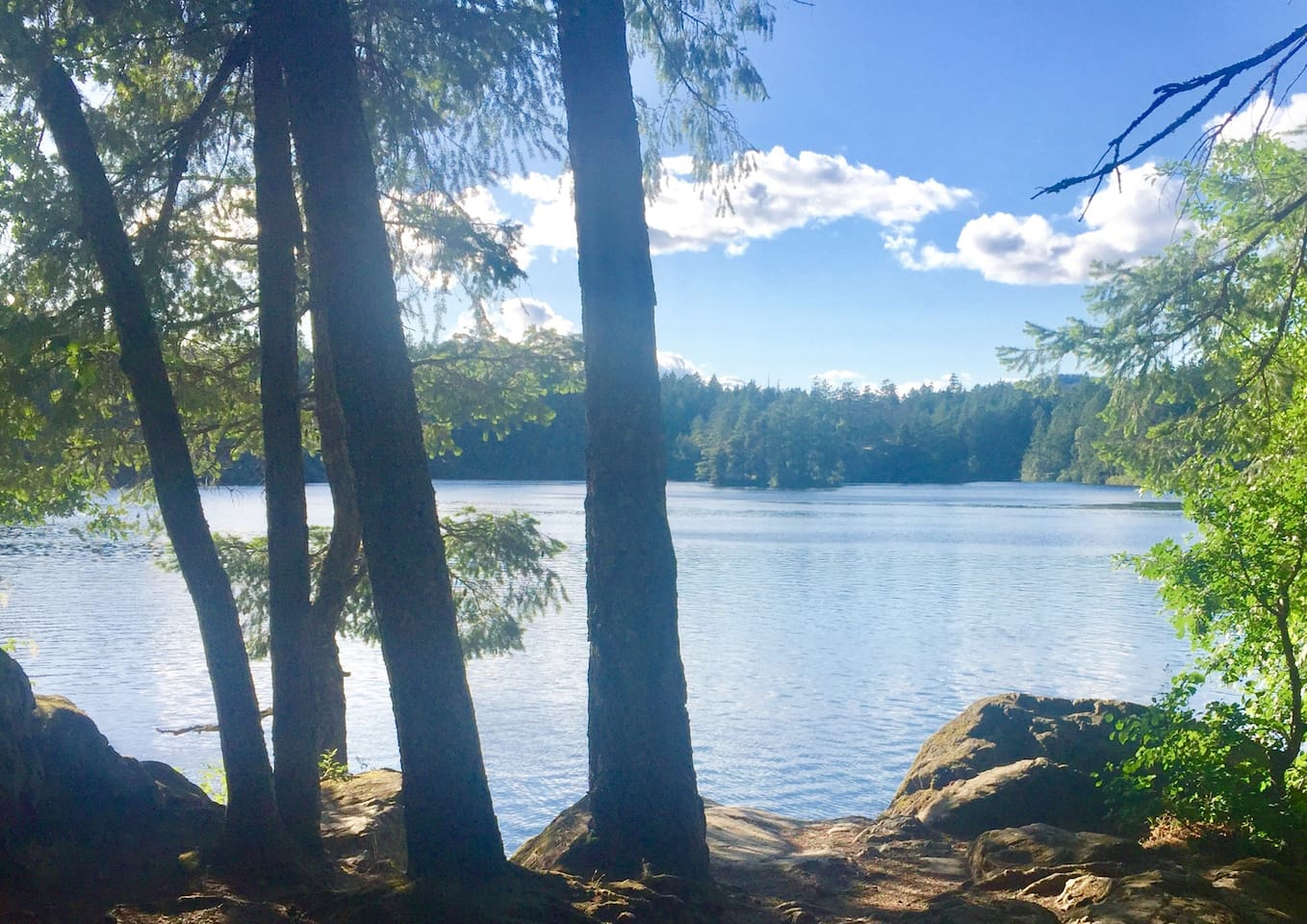 Stunning Thetis Lake. 5-10 minute walk from this Family Friendly Suite