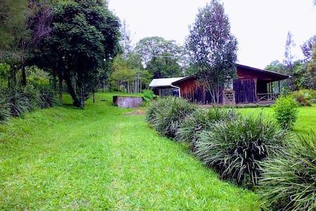 Pepper Tree Cabin, Nandi Hills Kenya